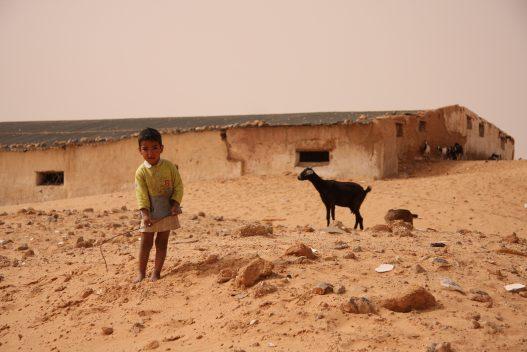 Niño refugiado acompañado por una cabra. Al fondo, construción de adobe seriamente dañada.
